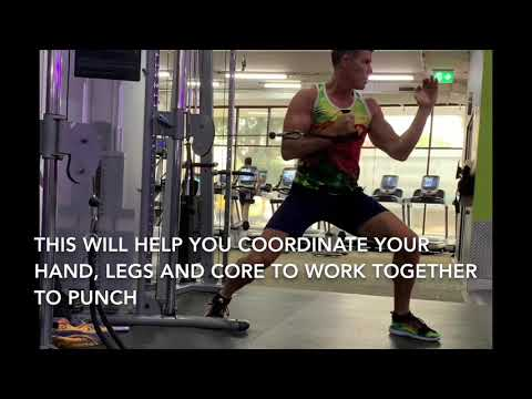 Karate workout: resists training for a reverse punch