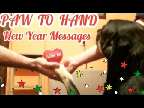 Srena Nova 2020 Godina/Happy New Year 2020 Messages