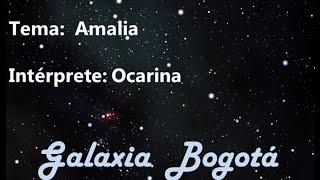 OCARINA - AMALIA