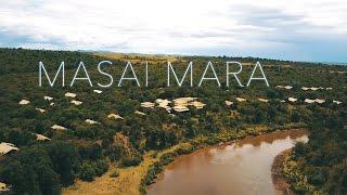 MASAI MARA Safari - DJI Mavic Pro - KENYA - 4K