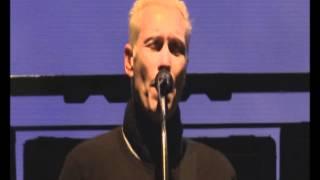 Die Ärzte - Schrei nach Liebe (Live Hurricane 2012)