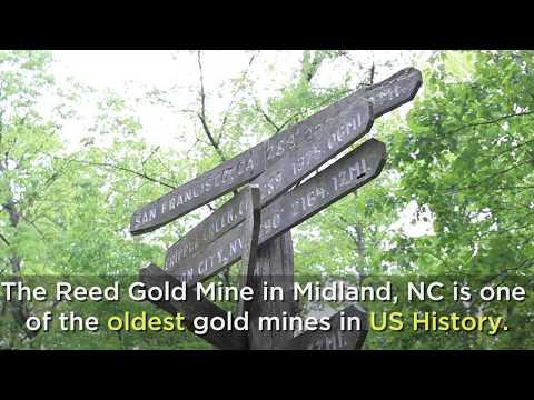 Historic Site Spotlight: Reed Gold Mine