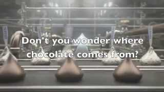 LAMPlatoon Critique: Where Does Chocolate Come From?