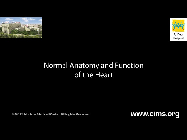 Normal Anatomy and Functions of the Heart english HD