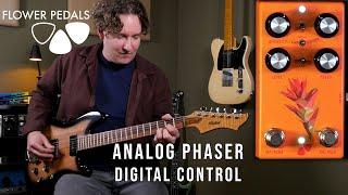 Flower Pedals - Castilleja Analog Phaser with Digital Control