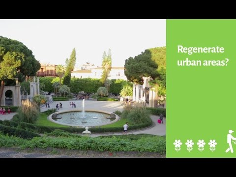 Sustainable Regeneration in Urban Areas