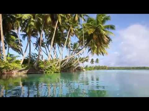 Stanford at Sea Part 4 -  Palmyra Atoll