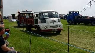 Selwood Show 2016 - BMC in the ring