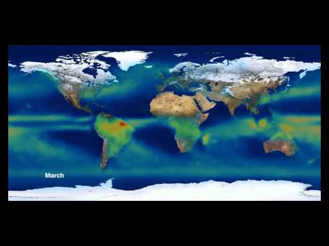 Global Precipitation Cycles