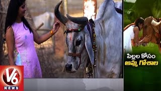 Special Story On Dairy Entrepreneur Divya Reddy Allola And Her Success | V6 News