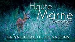Haute-Marne Sauvage - Au fil des saisons
