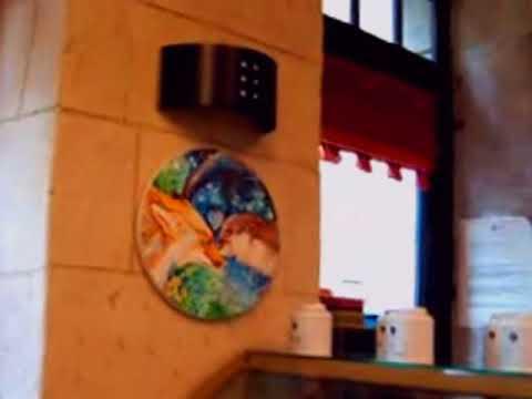 "Painting Exhibition at ""Subtil et Thé"" restaurant Valence France"