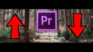 Crop Opening Transition Effect | PREMIERE PRO TUTORIAL (How to Black Bars open close like BIG SHAQ)