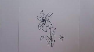 Kolay Çiçek Nasıl Çizilir 1/30 Kolay Çizimler