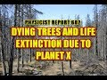 682:  Dying trees and life extinction due to Planet X