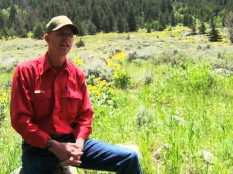 Wyoming Wildlife TV #7--Habitat