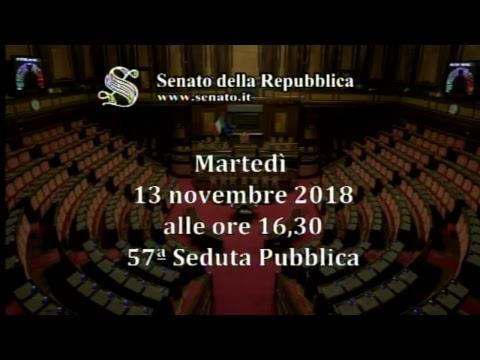 Il ministro Matteo Salvini risponde al Question time