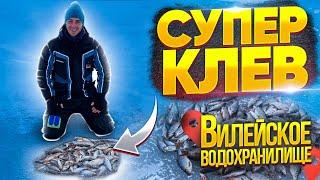 На такую рыбалку хотят все Зимняя рыбалка на мормышку ICE FISHING