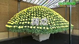 「浮世絵ツアー」〜江戸の四季巡り 秋の巻〜に店主が出演しております。...