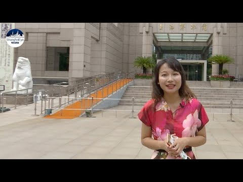 REPLAY: Explore Shanghai Museum, which boasts over 140,000 elite Chinese antiques!的副本