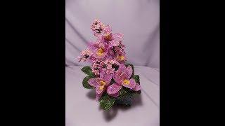 мк «Гармония орхидей»