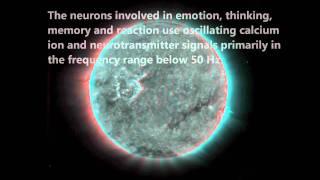 Solar/Geomagnetic Activity, Schumann Resonances  & Biophysiology