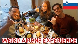 Sleeping in a Slovenian Barn - Strange Airbnb   Slovenia Winter Road Trip with The Endless Adventure