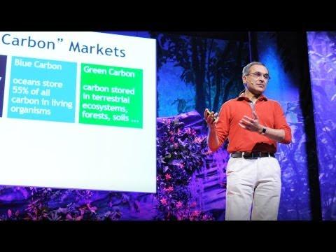 Pavan Sukhdev: Put a value on nature!