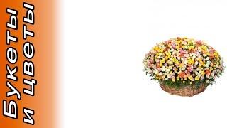 Композиция из 301 кустовой розы . Доставка цветов и подарков.(Композиция из 301 кустовой розы Купить со скидкой: http://experttovar.ru/cr Описание: Состав: Роза кустовая оранжевая..., 2015-11-08T11:51:45.000Z)