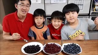 블루베리 복분자 산딸기(열매,쥬스) 가족먹방(blueb…