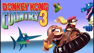 Hooper Live Donkey Kong Country 3