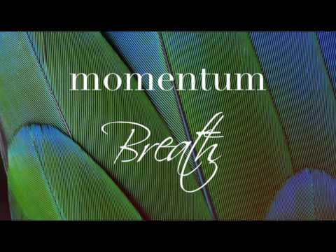 Momentum - Breath ( Progressive Trance Set )