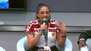56th GEF Council Day 1 - CSO Session - June 10, 2019 PM Session - Part 2