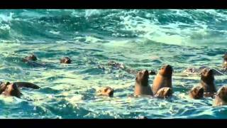 The Breath of the Ocean - Oxygene The Ocean