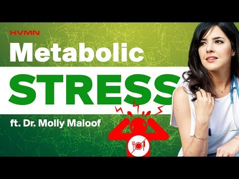 intermittent-fasting-when-stressed-&-understanding-blood-sugar-spikes-·-#118-ft.-dr.-molly-maloof