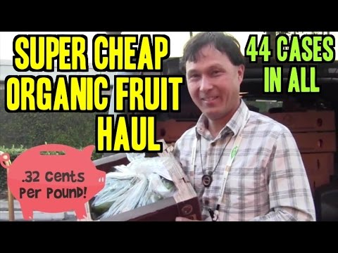 Super Cheap Organic Fresh Fruit Shopping Haul