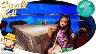 เด็กจิ๋วเที่ยว Ocean Park ตอน7 เดินเล่น ดูปลา กินข้าวเย็น โชว์น้ำพุ Symbio [N