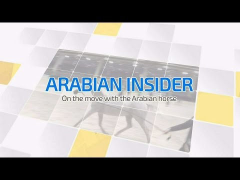 Arabian Insider - Chantilly 2016 [Episode 4]