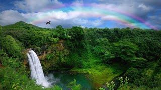 the-garden-island-kauai-hawaii-2016