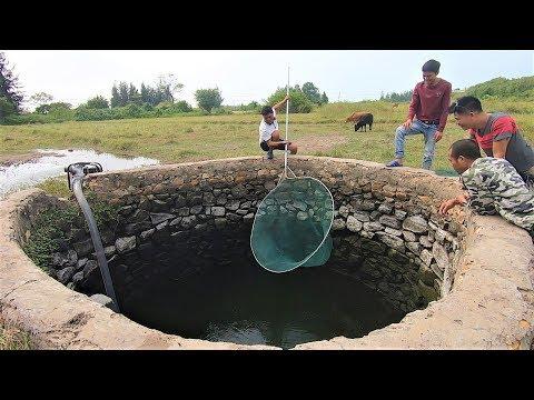 一伙人抽干5米深的灌溉井,抓到一堆存活多年的大货,这下发财了