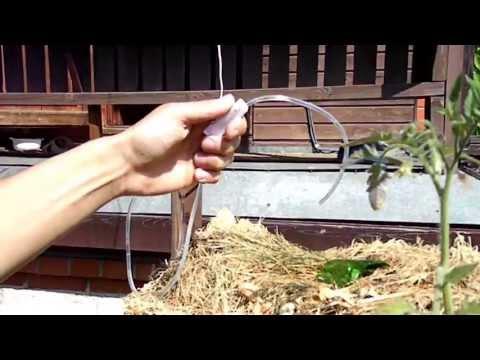 видео: Капельный полив из капельницы (на вертикальной грядке)