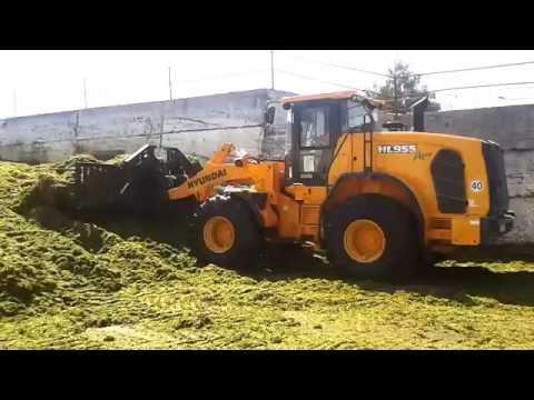 Video Kolové kloubové nakladače Hyundai HL955