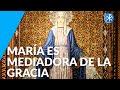María es Mediadora de la Gracia | Perseverancia - P. Gustavo Lombardo