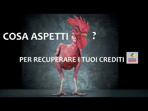 GENERAL CREDIT RECUPERO CREDITI Veneto