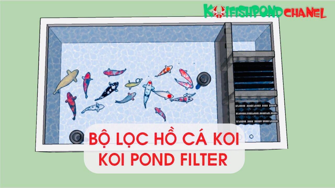 Bản vẽ bộ lọc hồ cá Koi – Hướng dẫn chi tiết cách xây hồ cá Koi | Koi pond filter system