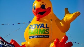 Royal Farms Chicken, Memphis, and the Dictionary Guy