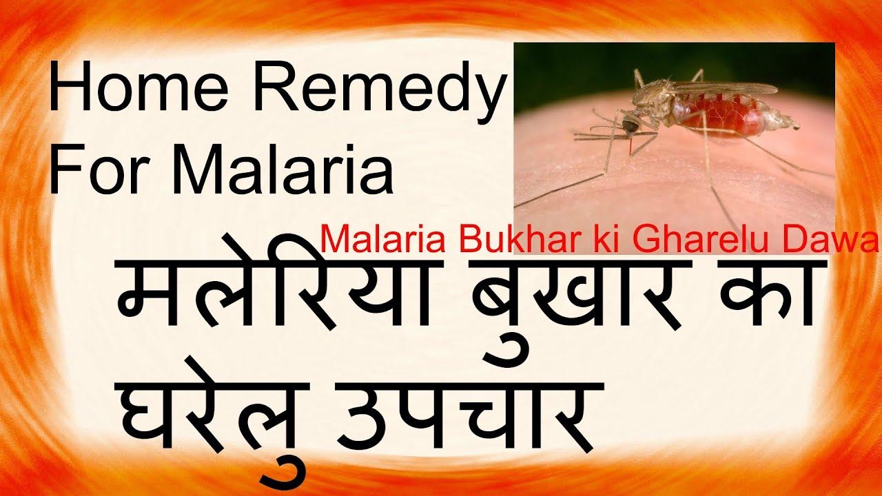 Home Remedies For Malaria In Babies