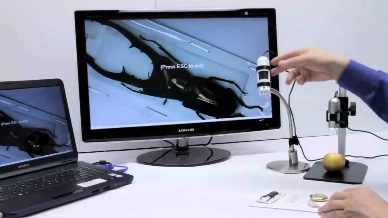 Dino lite am handheld digital microscope youtube
