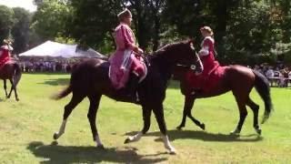 Pałac w Lubostroniu 2016 - Pokaz Kadryla na koniu