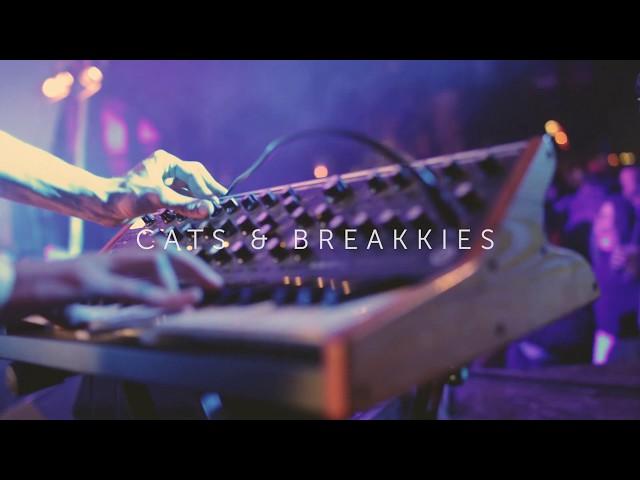 CATS & BREAKKIES -